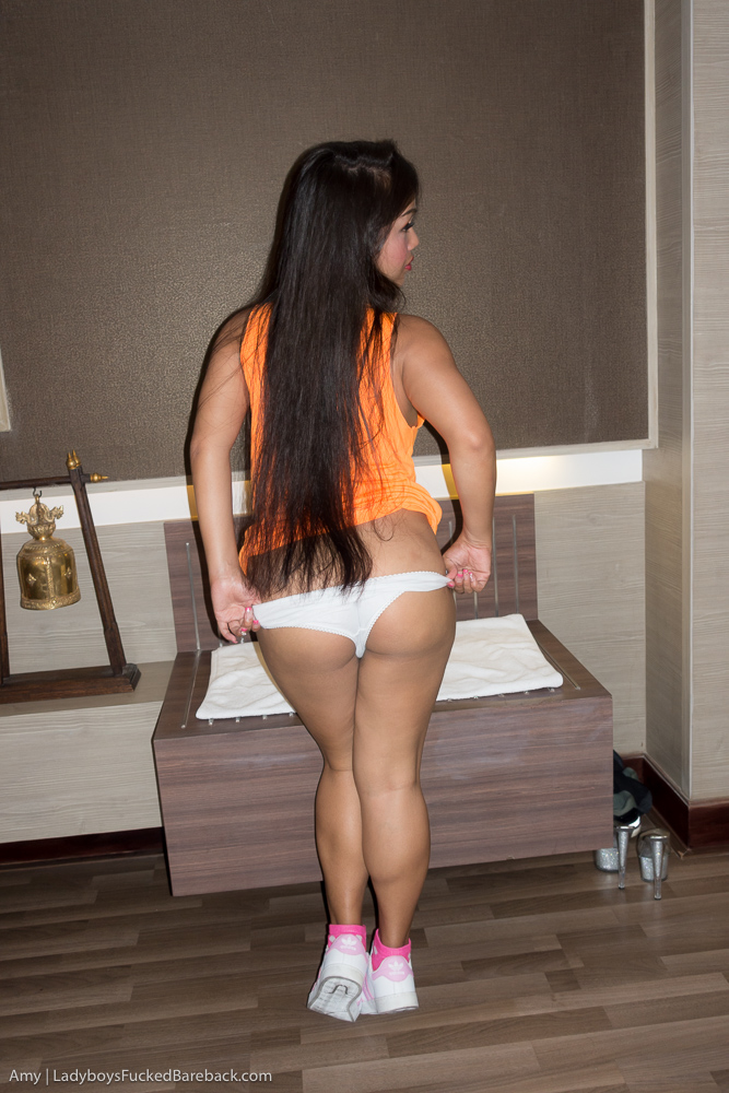 Showing Images For Ladyboy Amy Bareback Xxx